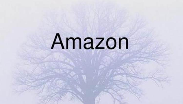 亚马逊中小卖家的选品思路应该是什么?