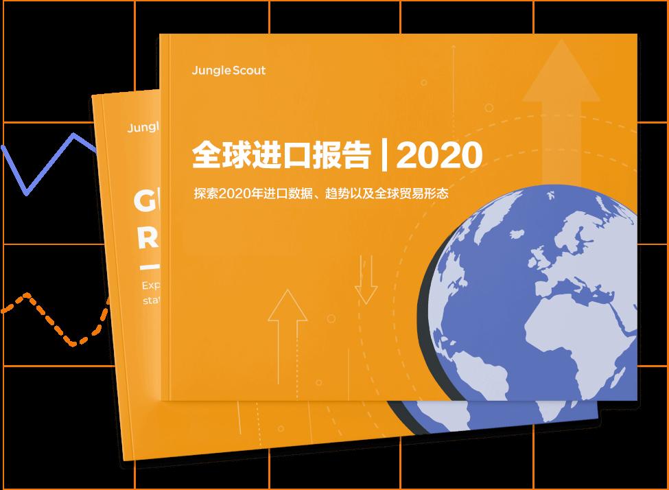 2020年亚马逊进口数据和趋势报告