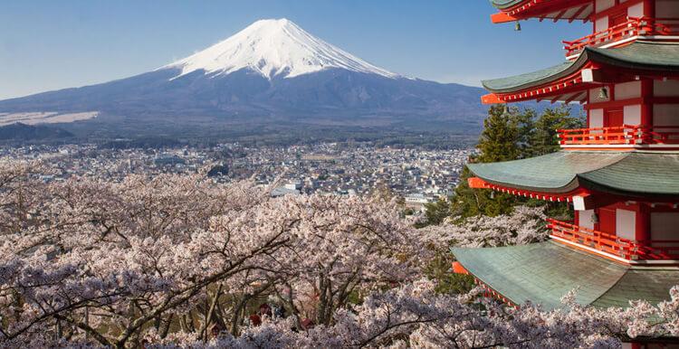 日本亚马逊推广_ 亚马逊日本站怎样运营?